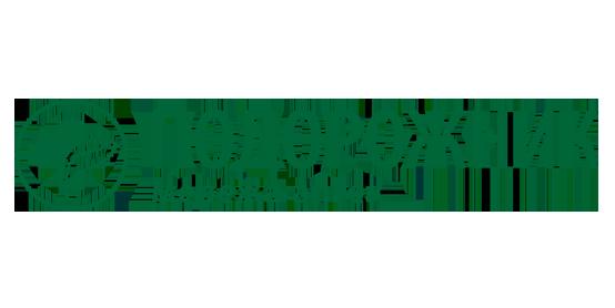 Podorozhnik